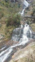 Silver Waterfalls
